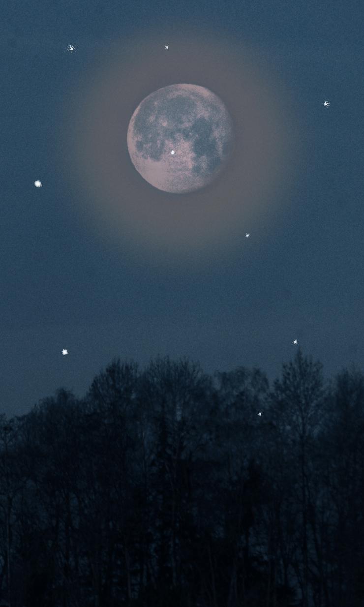 Elfen Im Mondschein Gedichte Fantasie Gedichte